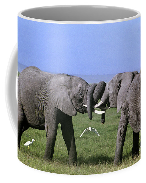 Africa Coffee Mug featuring the photograph African Elephant Greeting Endangered Species Tanzania by Dave Welling