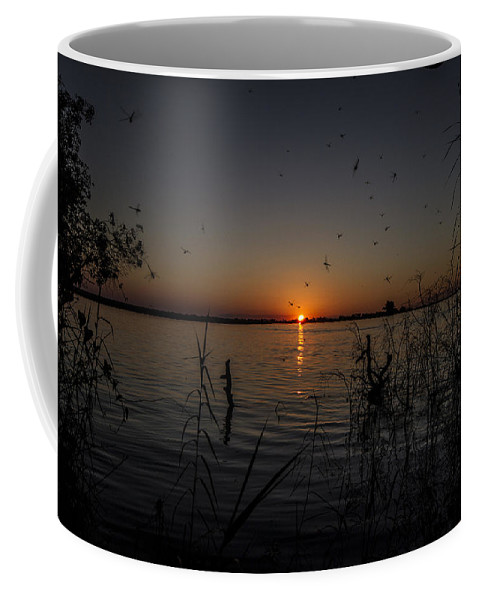 African Coffee Mug featuring the photograph African Sunset by Suanne Forster