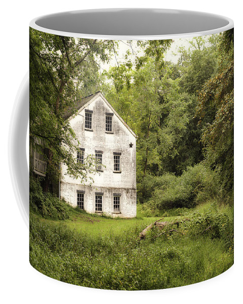 Terry D Photography Coffee Mug featuring the photograph After The Rain by Terry DeLuco