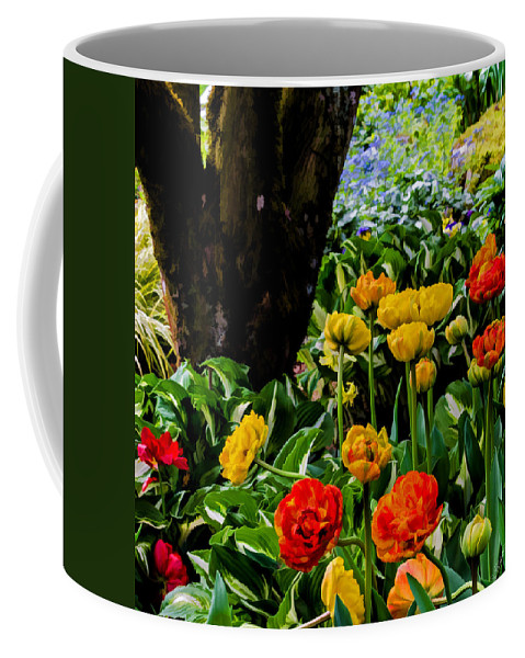Tulips Coffee Mug featuring the photograph Afternoon Delight by Jordan Blackstone