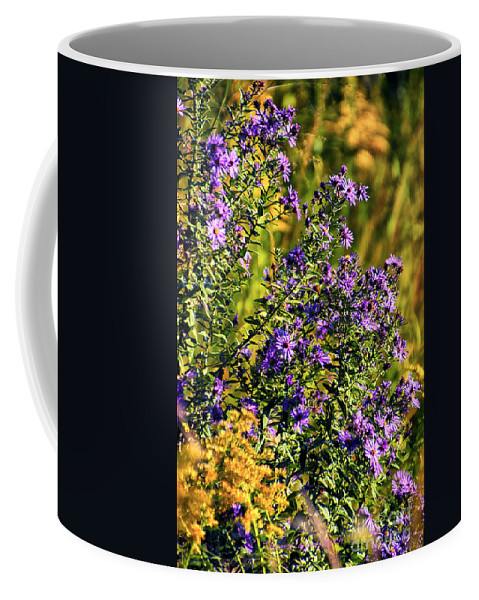 Floral Coffee Mug featuring the photograph Afternoon Delight by Thomas Woolworth