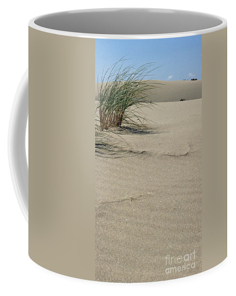 Dunes National Park Coffee Mug featuring the photograph Afternoon Light by Sharon Elliott