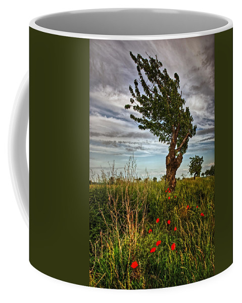 Weg Coffee Mug featuring the pyrography Against The Wind by Steffen Gierok