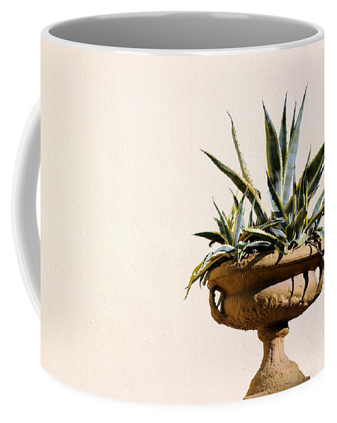 Agave Coffee Mug featuring the photograph Agave In Pot by Grigorios Moraitis