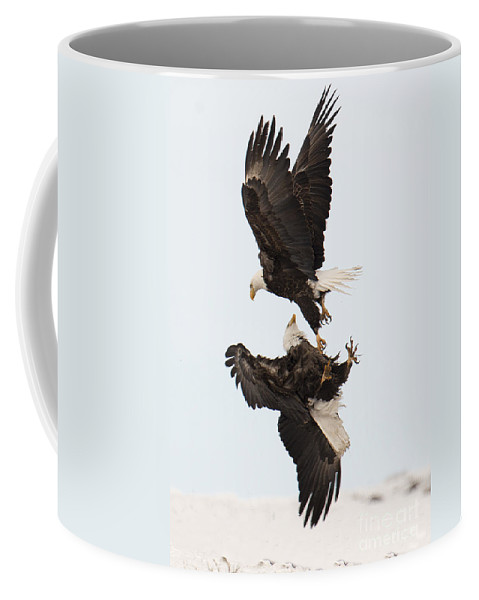 Eagle Coffee Mug featuring the photograph Air Fight by Deby Dixon