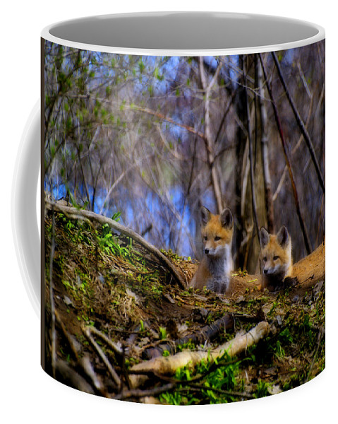 Red Foxes Coffee Mug featuring the photograph Alert Cute Kit Foxes by Thomas Young