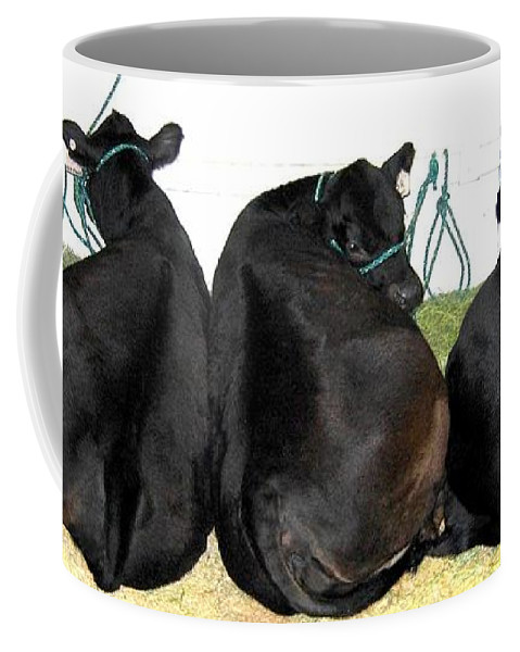 All Eyes Front Coffee Mug featuring the photograph All Eyes Front by Will Borden