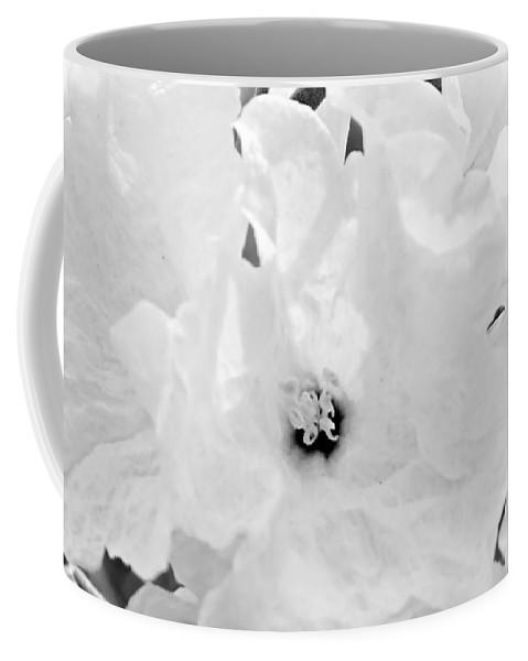 White Flower Coffee Mug featuring the photograph All In White by Kume Bryant