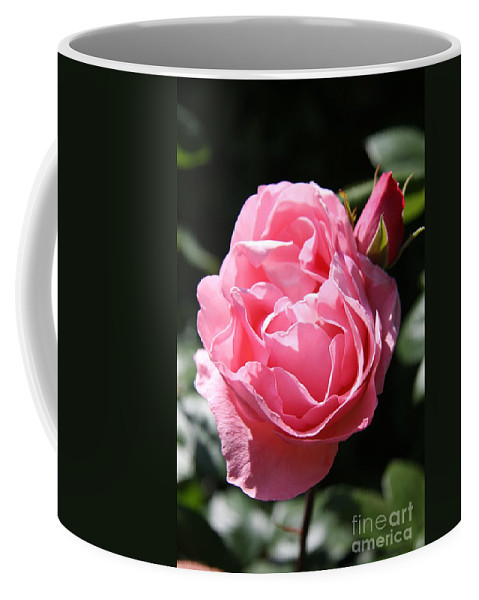 Rose Coffee Mug featuring the photograph All Shades Of Pink by Christiane Schulze Art And Photography