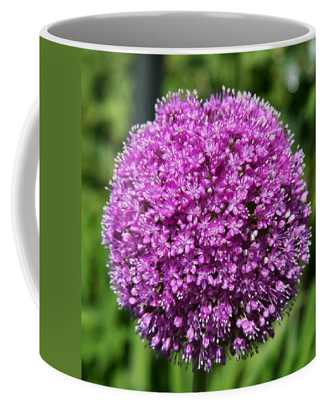 Allium Coffee Mug featuring the photograph Allium Globe by Christiane Schulze Art And Photography