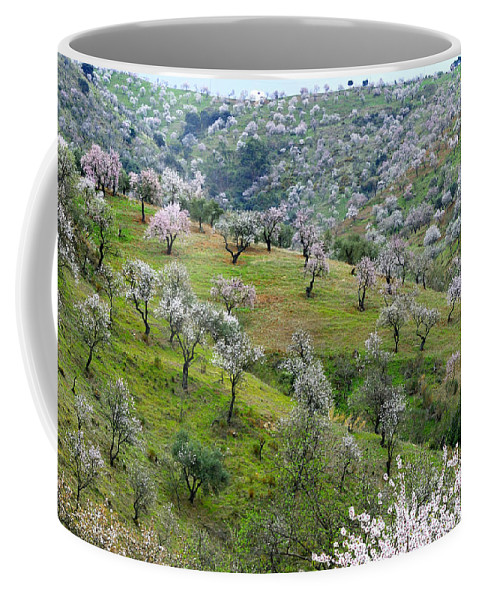 Flowers Coffee Mug featuring the photograph Almonds by Guido Montanes Castillo