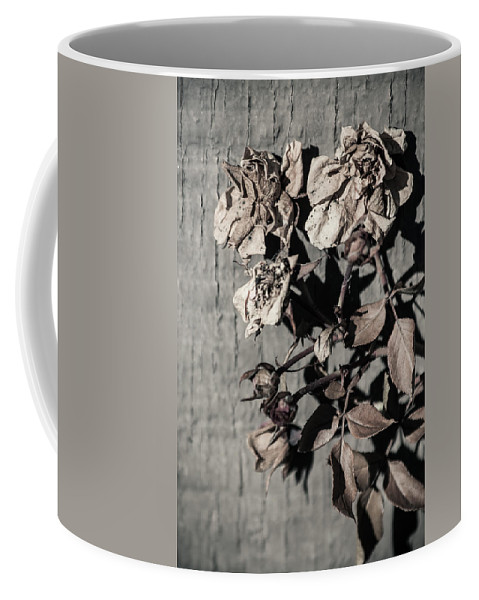 Background Pattern Coffee Mug featuring the photograph Almost Gone by Lauri Novak