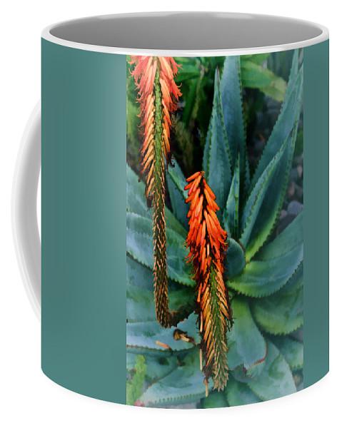 Aloe Coffee Mug featuring the digital art Aloe by Georgianne Giese