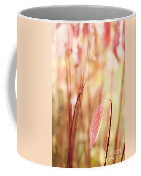 Alone Coffee Mug featuring the photograph Alone by Anne Gilbert