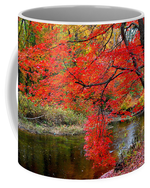 New Hampshire Coffee Mug featuring the photograph Along The Lamprey by Eunice Miller