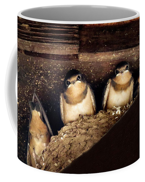 Bird Coffee Mug featuring the photograph Always One In The Group by Art Dingo