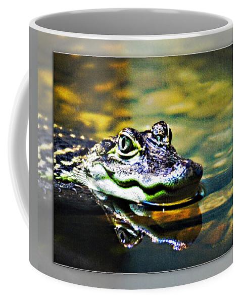 Rolling Hills Wildlife Adventure  Coffee Mug featuring the photograph American Alligator 2 by Walter Herrit