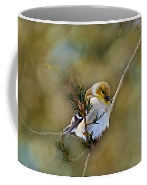 Branch Coffee Mug featuring the photograph American Goldfinch On A Cedar Twig - Digital Paint by Debbie Portwood