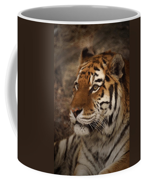 Tiger Coffee Mug featuring the photograph Amur Tiger 2 by Ernie Echols