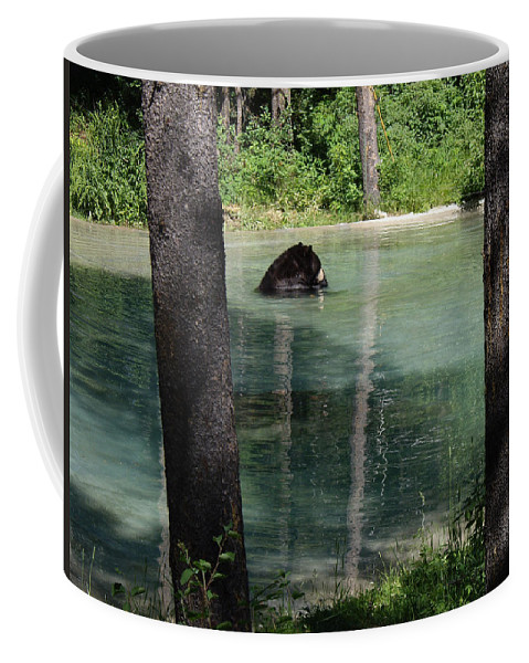 Bears Coffee Mug featuring the photograph Bear In The Afternoon by Barb Dalton