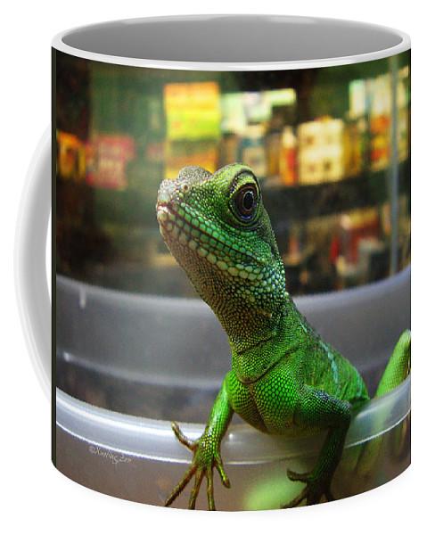 Gecko Coffee Mug featuring the photograph An Escape Artist by Xueling Zou