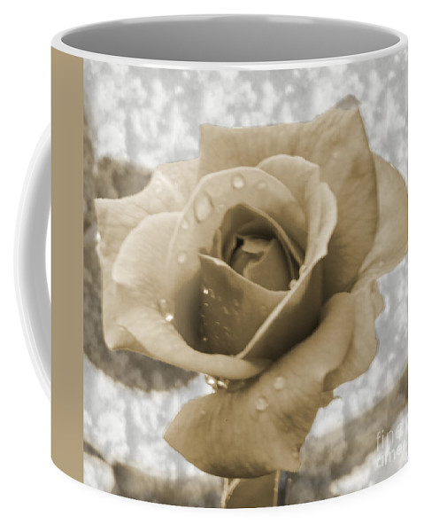 Rose Coffee Mug featuring the photograph An Old Fashion Rose by Donna Brown