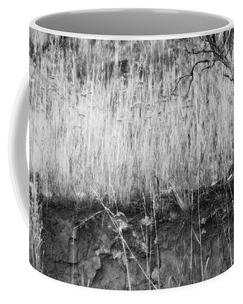 Sagebrush Coffee Mug featuring the photograph Ancient Sagebrush 2 by Theresa Tahara