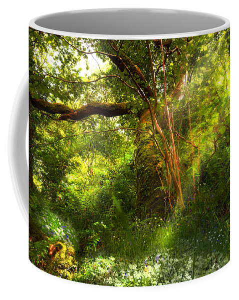 Tree Coffee Mug featuring the photograph Ancient Tree by Mal Bray