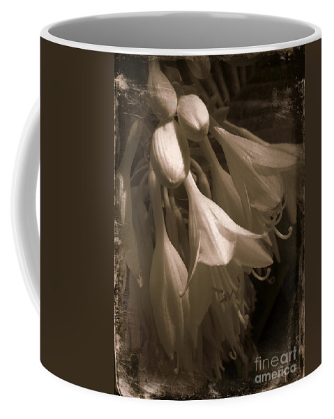 Flowers Coffee Mug featuring the photograph Antique Bells by Miriam Danar