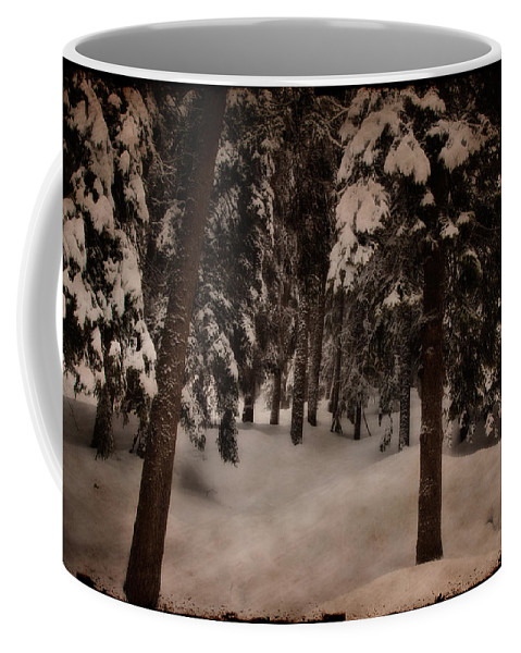 Environment Coffee Mug featuring the photograph Antique Woodscape by Roberto Pagani