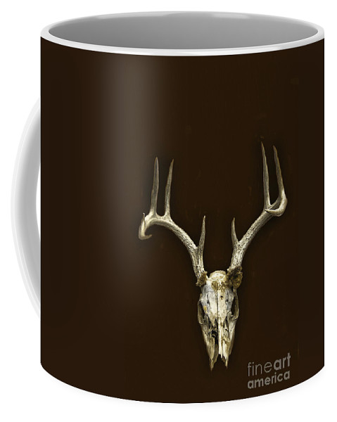 Skull Coffee Mug featuring the photograph Antlers by Margie Hurwich