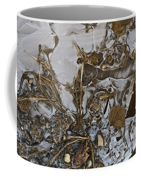 Ice Coffee Mug featuring the photograph Apparitions On Ice by Susan Capuano