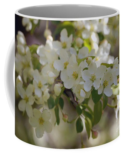 Blossom Coffee Mug featuring the photograph Apple Blossoms by Lori Tordsen
