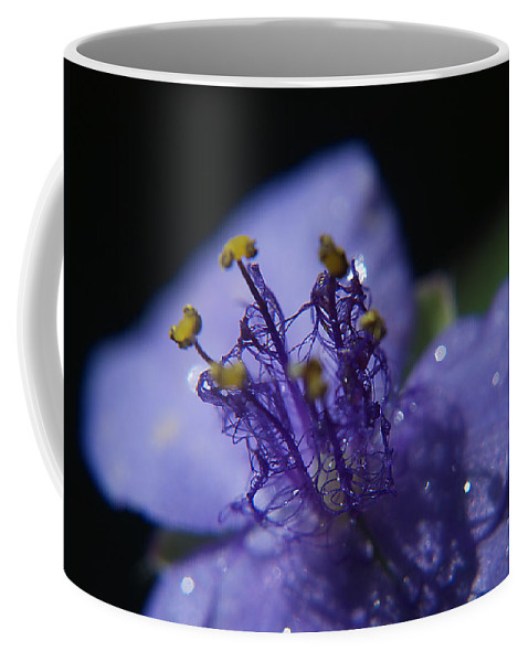 Weed Coffee Mug featuring the photograph April Showers by Bob Johnson