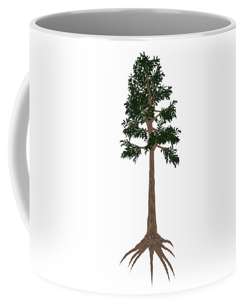 Archaeopteris Coffee Mug featuring the photograph Archaeopteris Prehistoric Tree by Elena Duvernay