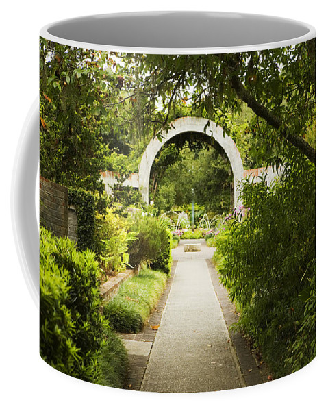 Arch Coffee Mug featuring the photograph Archway by Marilyn Hunt