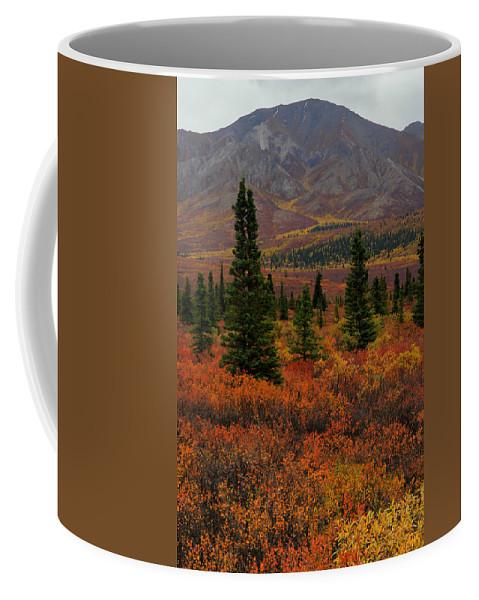 Alaska Coffee Mug featuring the photograph Arctic Color by Kevin Buffington