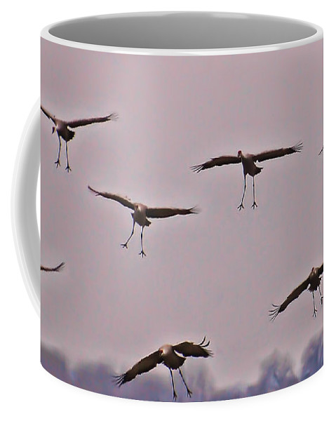 Cranes Coffee Mug featuring the photograph Are You Sure This Is The Spot by Don Schwartz