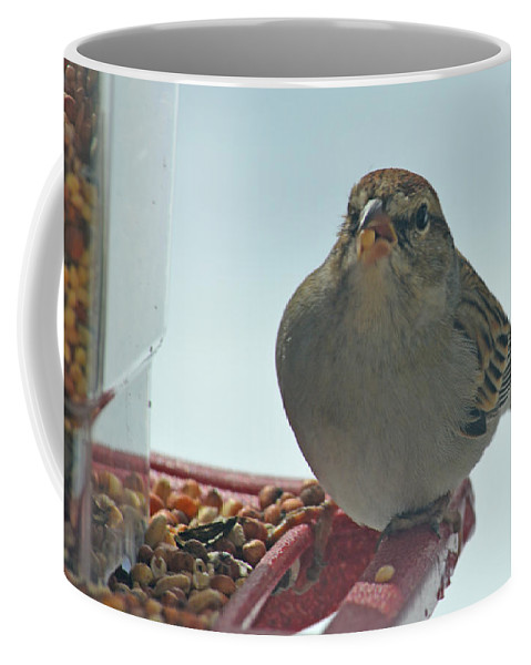 Red Coffee Mug featuring the photograph Are You Sure You Want This Seed? by Barb Dalton