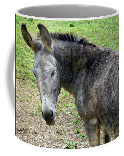 Donkey Coffee Mug featuring the photograph Are You Talking To Me by Rabiah Seminole