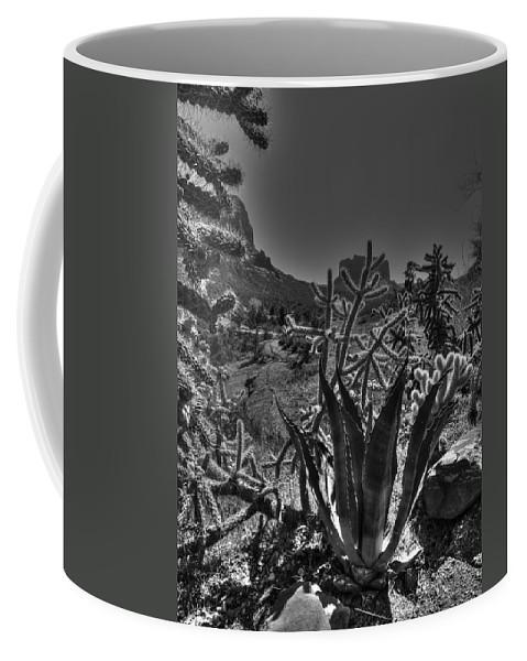 Arizona Coffee Mug featuring the photograph Arizona Bell Rock Valley N9 by John Straton