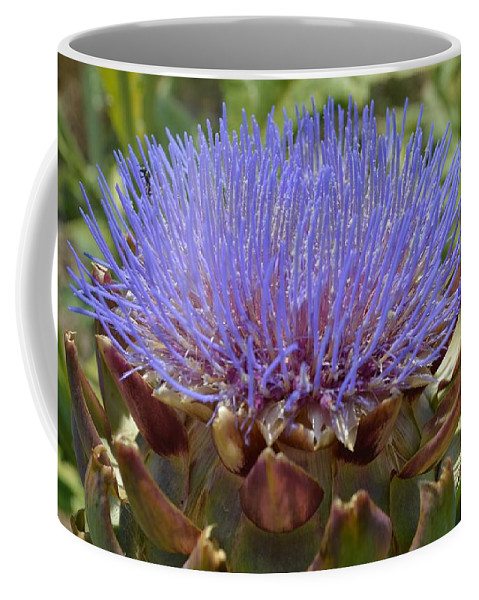 Artichoke Coffee Mug featuring the photograph Artichoke Bloom by Cynthia Croal