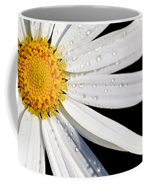 White Daisy Coffee Mug featuring the photograph As Bright As A Daisy... by Kaye Menner