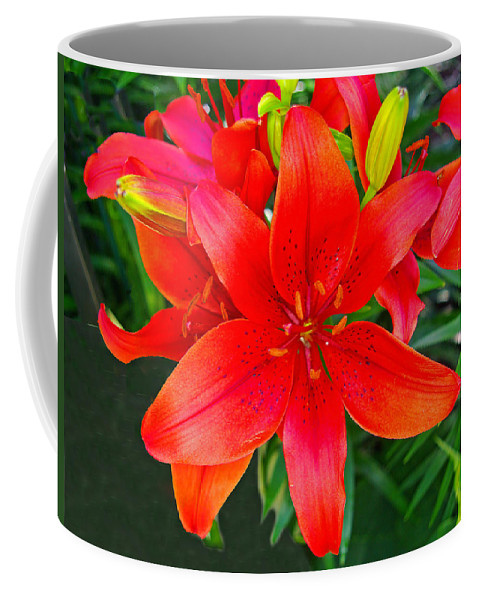 Lily Coffee Mug featuring the photograph Asiatic Hybrid Lily by Rich Walter