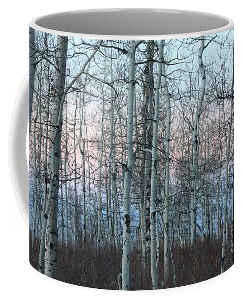 Aspens Coffee Mug featuring the photograph Aspens In Twilight by Brandi Maher
