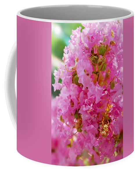 Coffee Mug featuring the photograph Augusta Beauty by Kim Blaylock