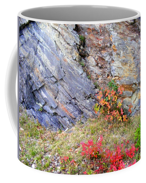 Landscapes Coffee Mug featuring the photograph Autumn And Rocks by Duane McCullough