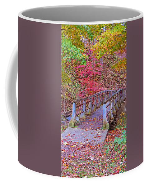 Bridge Coffee Mug featuring the photograph Autumn Bridge by Kay Novy
