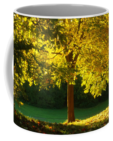 Nature Coffee Mug featuring the photograph Autumn Colors 10 by Rudi Prott