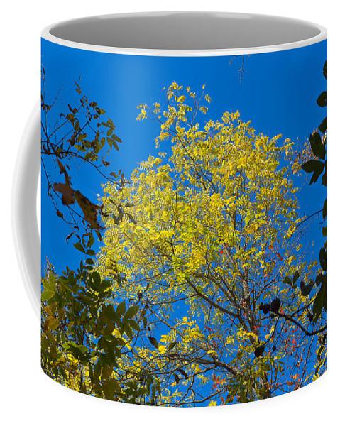 Sky Coffee Mug featuring the photograph Autumn Colors Against The Sky by John M Bailey